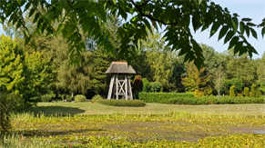 Begraafplaats Dennehof Den Ham